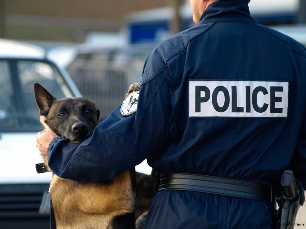 Police Nationale - Le Chien de Berger Malinois